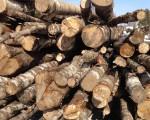 Береза на дрова